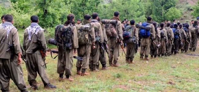 Musul Valisi'nden İlginç Çağrı! PKK'nın Çekildiği Yerlere Güç İstedi!