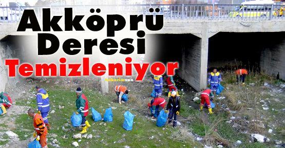 3 Belediye Akköprü Deresi'ni Temizliyor