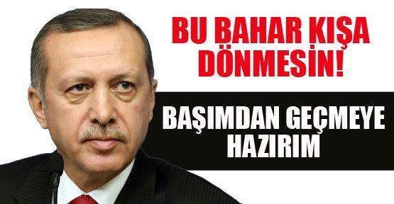 Erdoğan: Başımdan Bile Vazgeçerim