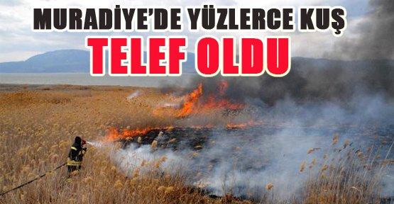 Muradiye'de Sazlık Yangını - Van Haberleri