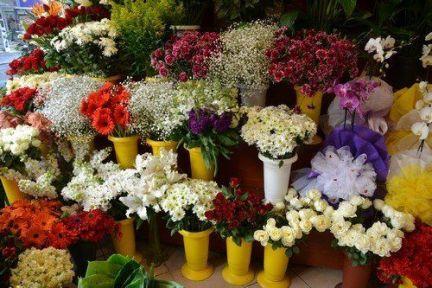 Şık Çiçek Seçenekleri
