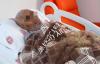 Kimsesiz Mehmet Amcaya Hastane Çalışanları Bakıyor
