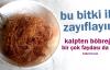 Vücuttaki Yağı Yakan Bitki: Mısır Püskülü