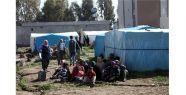 Adana'da Suriyeller Arasında Alkol Yüzünden Kavga Çıktı! Ölü ve Yaralılar Var