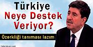 Altan Tan: Türkiye Neye Destek Veriyor