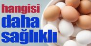 Hangi Yumurta Daha Sağlıklı Beyaz Mı...