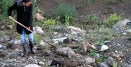 Muradiye'de Sel Felaketi