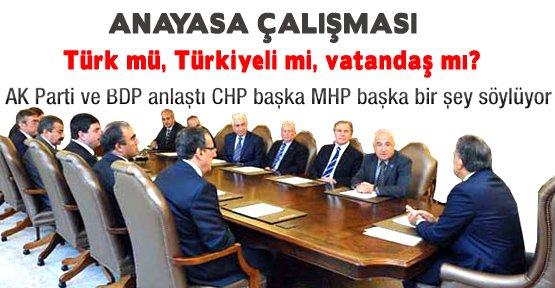 'Vatandaşlık' tanımı: Türk mü, Türkiyeli mi, vatandaş mı?