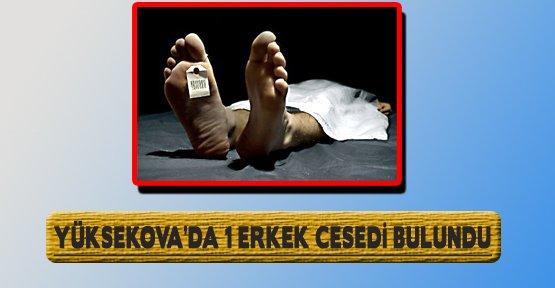 Yüksekova'da Bir Erkek Cesedi Bulundu