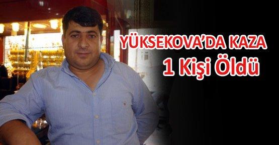 Yüksekova'da kaza; 1 Kişi öldü