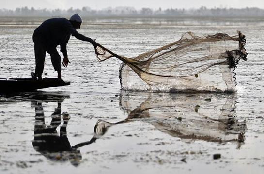 Balık Ağı Fiyatları