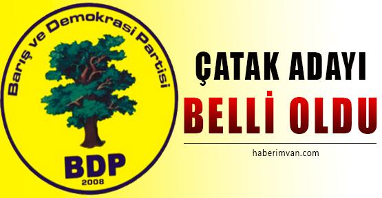 BDP Çatak Belediye Başkan Adayı Belli Oldu