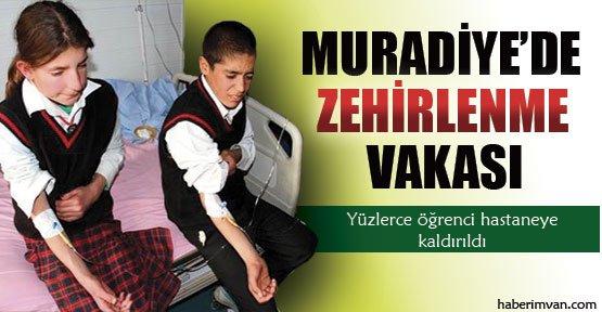 Muradiye'de Zehirlenme Vakası - Van Haberleri
