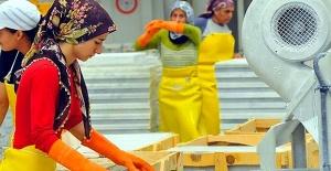 Mesleki Yeterlilik Belgeli Kadın İş Gücü 50 Bini Aştı