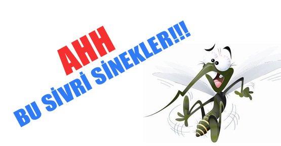 Van Sivrisinekle Mücadele Ediyor