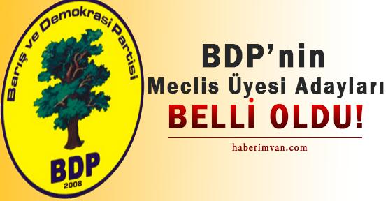Van'da BDP'nin Meclis Üyesi Adayları Belli Oldu